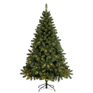 Christmas enlivening arrangement